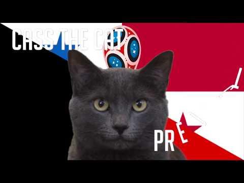Belgium vs Panama | Group G | 2018 FIFA World Cup Cass the Cat Prediction