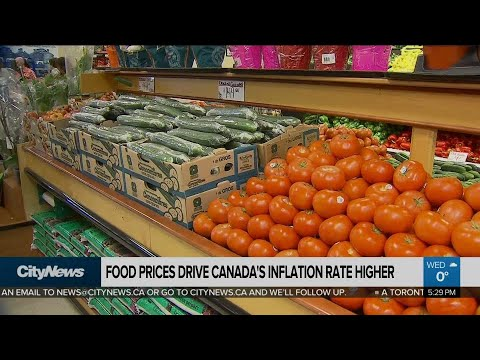 Business Report: Canadian food prices rising