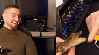 Du Falsch - Du Krokodil Biss (EXTREME EDITION)