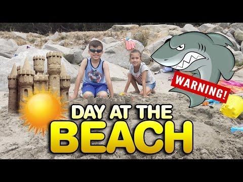 SHARK WARNING At The BEACH!!! Stay Out Of The Water!