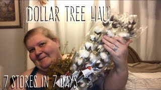 Dollar Tree Haul July 25, 2019-7 Stores in 7 Days
