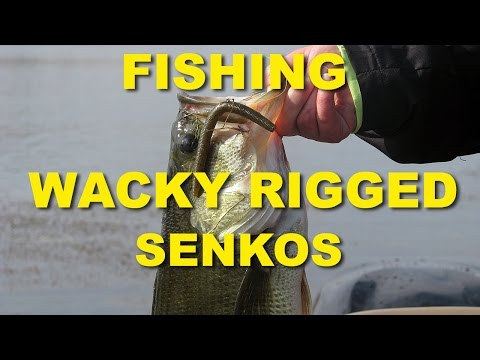 5 Tips For Fishing A Wacky Rig Senko | Bass Fishing