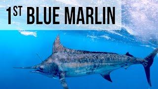 Caught My FIRST Blue Marlin!!