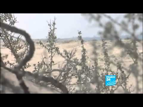 EXCLUSIVE  Libya, the Brega battle LIVE!