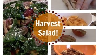 Easy Harvest Salad | Turkey, Kale, Butternut Squash, Etc.