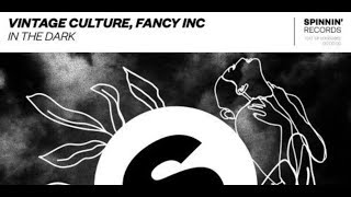 Vintage Culture & Fancy Inc — In The Dark