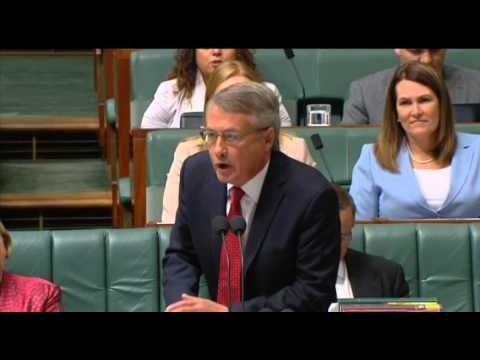 Wayne Swan accuses Tony Abbott of being drunk