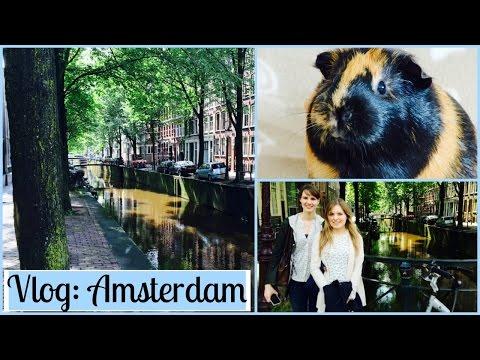 Wheek-ly Vlog 35: Amsterdam & Guinea Pig Tunnel Time