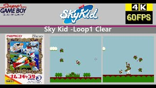 [SGB] Namco Gallery Vol.3 ナムコギャラリー Vol.3 -Sky Kid Loop1 Clear