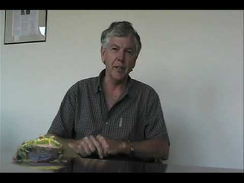 Rainforest Action Network Founder Randy Hayes' Frog Message for The Prince's Rainforests Project