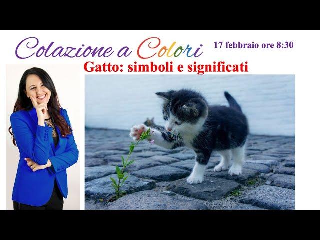 Colazione a colori con Samya e Paola Rava-  Gatto simboli e significati  - 17 FEBBRAIO 2021