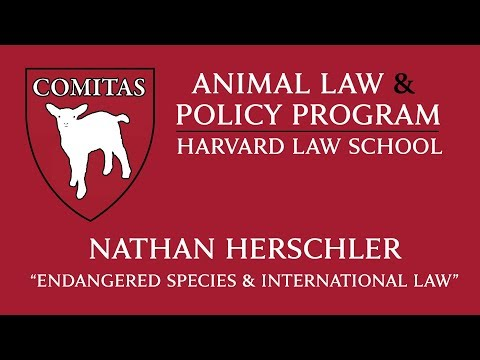 """""""Endangered Species and International Law"""" – Nathan Herschler and Chris Green, 11/8/16"""