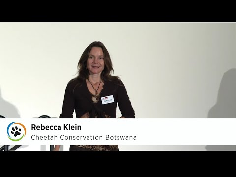 Cheetah Conservation Botswana · Rebecca Klein & Jane Horgan · SF Expo 2015