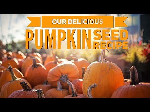 Pumpkin Carving || Our Easy and Delicious Pumpkin Seed Recipe