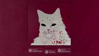 SP4K feat. ЛСП — Атака Кота смотреть онлайн в хорошем качестве бесплатно - VIDEOOO