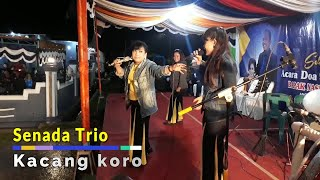 Download Mp3 Senada Trio Terbaru Feat Anju Trio
