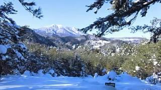 れぴ(サルーキ)と一緒に雪山を歩きます。 青空が綺麗でした^^