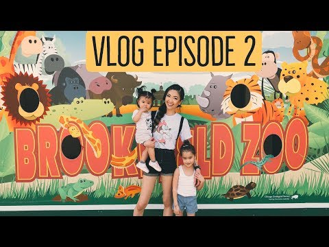 Vlog Episode 2 - The Brookfield Zoo