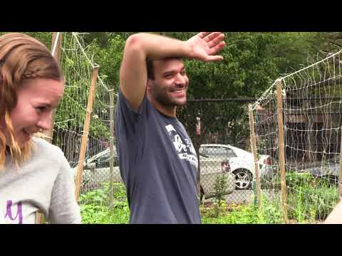 Columbia Students Visit East New York Farms!