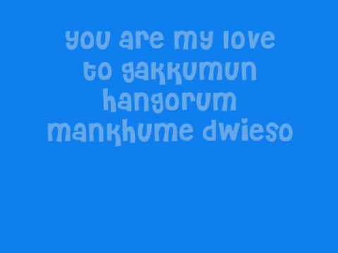 super junior -you are the one [romanized and english lyrics]
