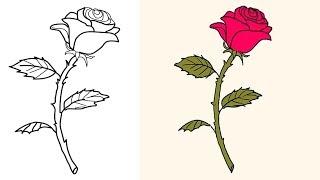 rose step stem draw drawing beginners easy roses pencil steps slow getdrawings coloring