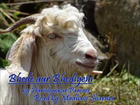 Download Bhede Aur Bhediyein by HariShakar Parsaee (Hindi) ICSE