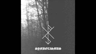 Nahtrunar - Wo Der Nachthimmel Sich Aufspreizt [Symbolismus] 2015
