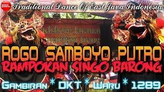 Jaranan Rogo Samboyo Putro Terbaru Rampokan Singo Barong Live Sukorame   Traditional Dance Of Java