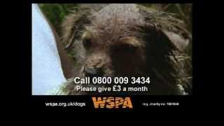 WSPA - Dogs TV Advert