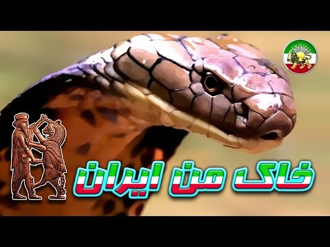 مستند فارسی - ماموریت های خطرناک - کشنده ترین مارها ★