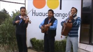 EL LLORAR. TRIO POLIFONIA HUASTECA