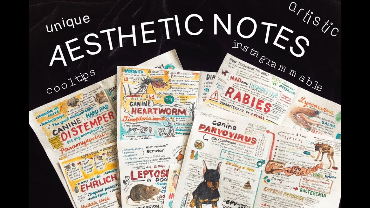 veterinary notes for students.