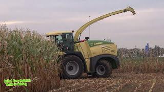 Mais 2016 - KRONE BIG X 580 - Riphagen Vaassen op Demo! - Maishäckseln Harvesting maize NL