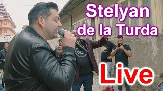 Stelyan de la Turda - Radacina cea mai tare - Live Huedin