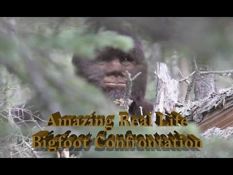 Amazing Bigfoot confrontation witnessed by University Professor
