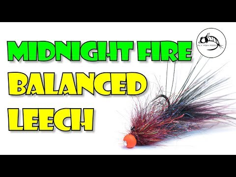 Midnight Fire BALANCED Leech
