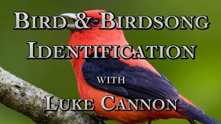 Bird & Birdsong Identification with Luke Cannon