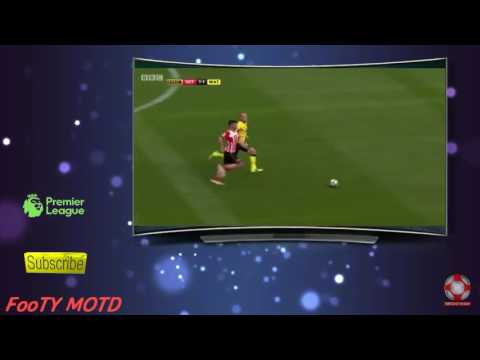 Shane Long Amazing Pace - Top Speed Vs Watford