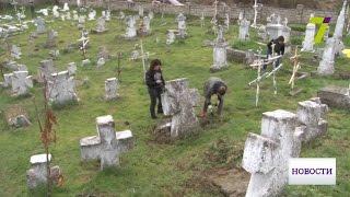 На казацком кладбище провели масштабную уборку и высадили молодой дуб