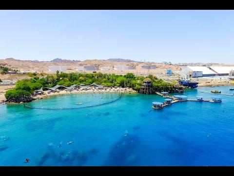 Dolphin Reef Beach | Beaches In Israel