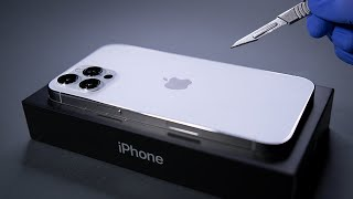 iPhone 12 Pro Max Unboxing and Camera Test - ASMR