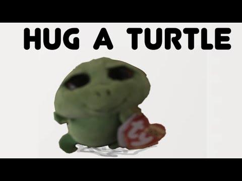 Beanie Boo Music Video Hug A Turtle