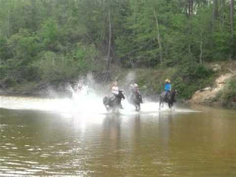 Horseback Riding San Jacinto River
