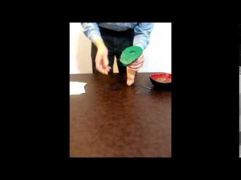 Splorch video