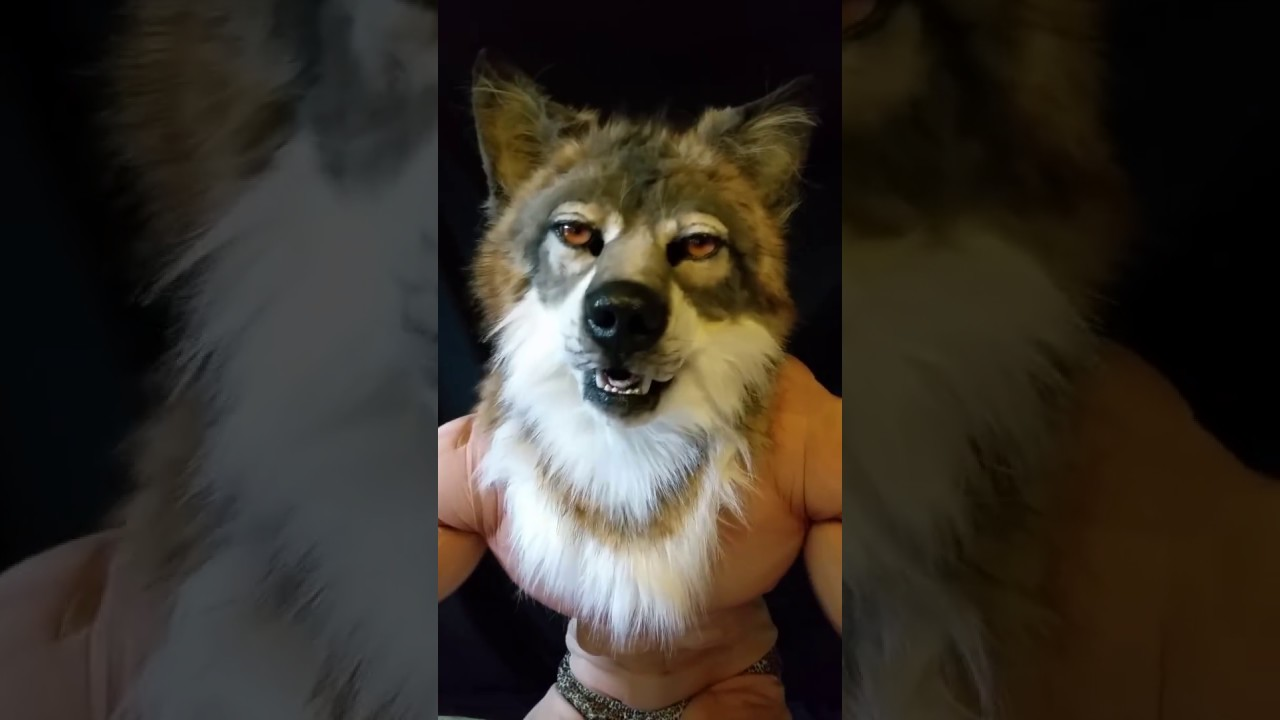 Sexy Wolves 86