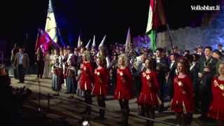 The Princely Liechtenstein Tattoo 2013