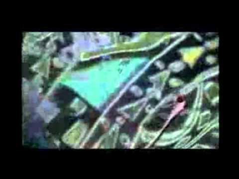 Rush - Roll the Bones (Legendado).wmv