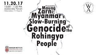 Myanmar's Slow-Burning Genocide of the Rohingya People