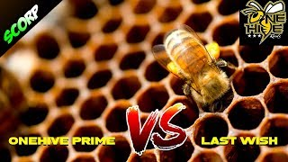 TOP 5 OneHive Prime vs Last Wish 3 Star War Attacks - Clash Of Clans