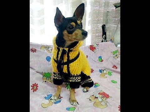 Схемы одежды для собак крючком